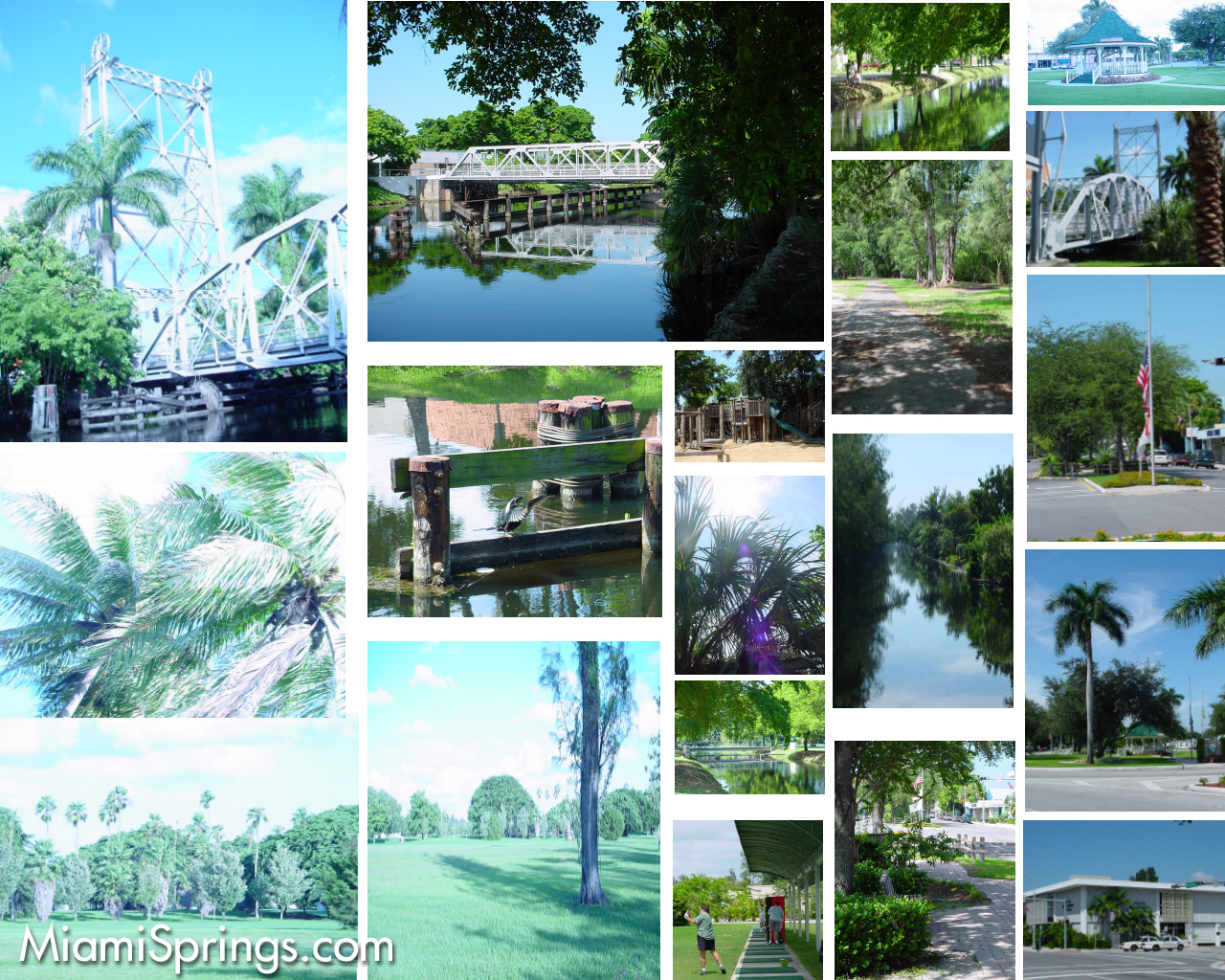 Miami Springs Collage