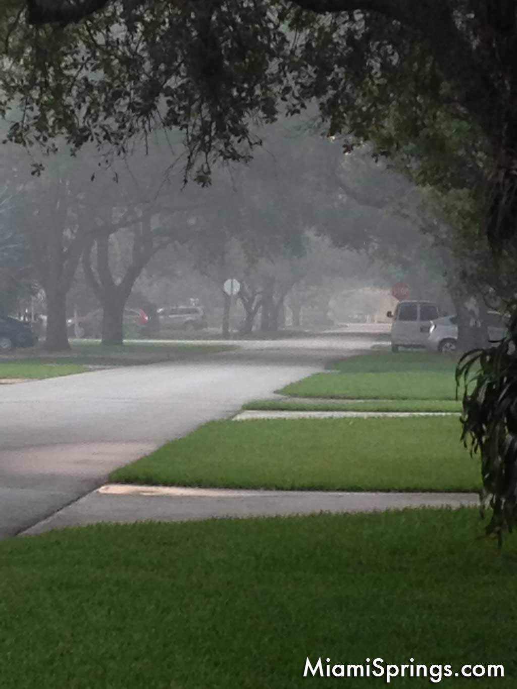 Foggy Morning in Miami Springs